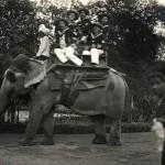 Elefantenritt, Bombay