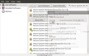 Adding Mono System.Runtime Support